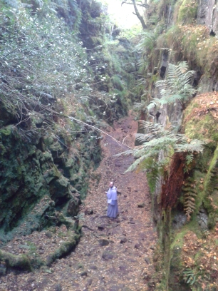 Lud's Church, a large chasm in Back Forest